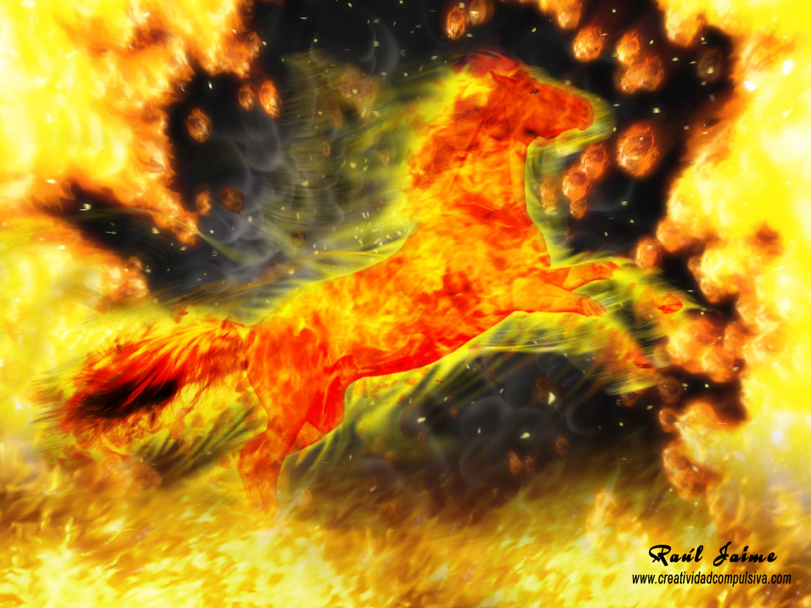 Fondo De Pantalla Wallpaper Caballo De Fuego Creatividad